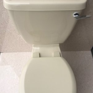 Indian_Ivory_Toilet