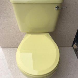 Primrose_Yellow_Toilet