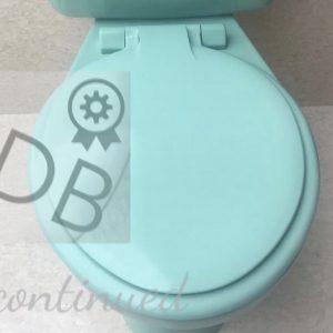 turquoise_toiletseat