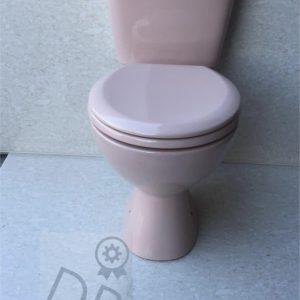 Pink_Push_button_toilet