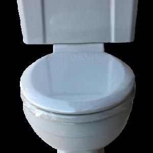 grey_art_deco_toilet