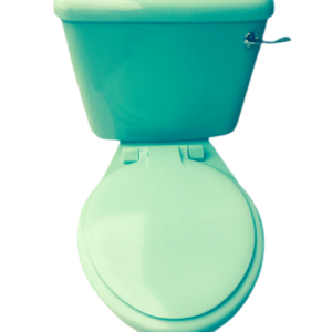 Jade_Green_Toilet