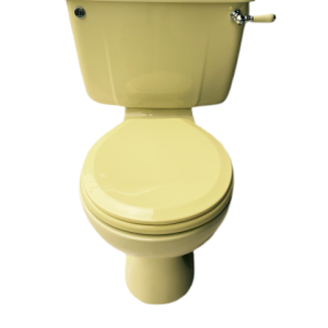 Primrose_yellow_toilet_yellow_lever