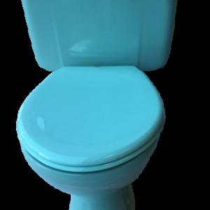 turquoise_lever_toilet